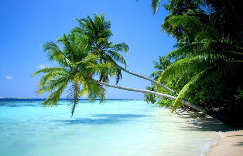 Risultati immagini per spiagge hd